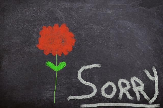 「すみません」を使った英語の例文